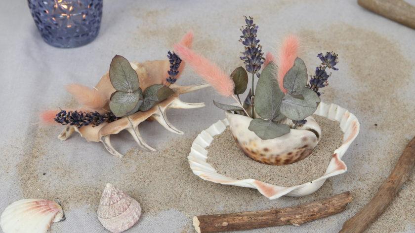Maritime Sommerdeko: Trockenblumen in der Muschel